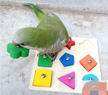 Educational Large Parrot Toys Grey Parrot Interactive Toys Colorful Wooden Bird Toy Parrot Training Products Bird Supplies D253