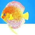New Silicone Discus Fish Tropical Fish Aquarium Decoration Glowing Style Angelfish Aquatic Animals For Fish Tank