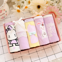 5pcs/lot Young Girls briefs Cotton Lace underpants for girls Teenagers Short panties lovely underwear calcinha christmas gift