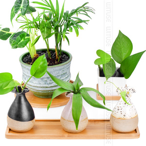 Image 2 - Wituse 12 Stijl Bloem Dozen Schotel Keramische Succulent Planter Plant Potten Bamboe Stand Desktop Geometrie Geglazuurd Vaas Bamboe Lade