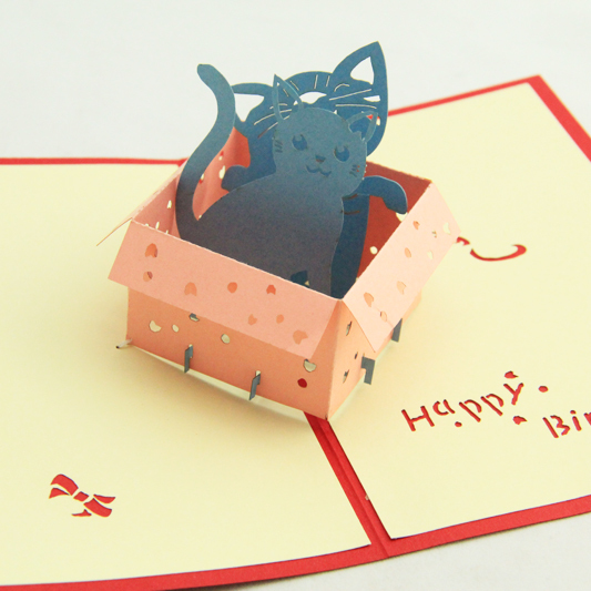Cool Kitty In The Box Birthday Card 3D Pop Up Greeting Card Handmade Personalised Birthday Cards Veneteletsinfo