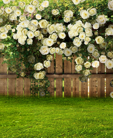 Vintage Photography Backdrops White Flowers Wedding Photo Background Wood Fence Spring Green Glass Photo Backdrops Newborn Baby