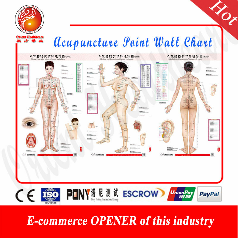 US $18 99 | Acupuncture Points Charts Wall Form 3 Pages Paper (87cmX58cm)  Meridian Chart Acupoint Location Acupuncture points wall chart -in Books