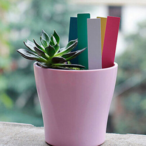 100 Pcs Garden Plant Pot Markers Plastic Stake Tags Yard Court Nursery Seed Label 2019 New