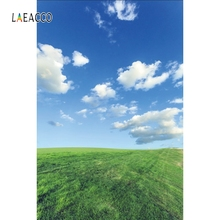 Laeacco Blue Sky White Cloud Grassland Nature Scenic Photography Backgrounds Customized Photographic Backdrops For Photo Studio цена