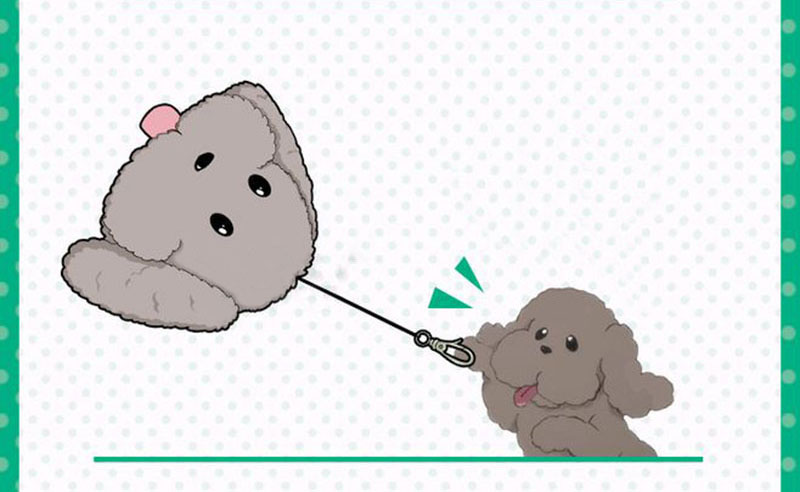 Cute Yuri on ice Victor Puppy Poodle Dog Plush Toy Makkachin Pet Dog Paper Box Keychain Pendant Cosplay Decoration Toy Kids Gift (4)
