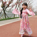 Guzheng Костюм феи Hanfu Ребенок Девушки Одежда для Детей Косплей Платья Танец Династии Тан Традиционные Древние Костюмы