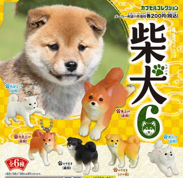 Japan original pet Capsule toys 6 pcs  kawaii Shiba Inu dog collection part 6 cute puppy pendant KeyChain figures Christmas Gift