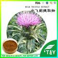 China fonte da fábrica de saúde Do Fígado cardo de leite extrato, silybum marianum extrato 300g
