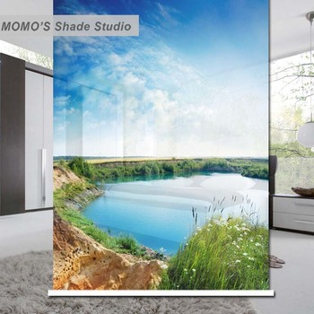 MOMO Thermal Insulated Blackout Fabric Custom Blue Window Curtains Roller Shades Blinds, Alice 41-44