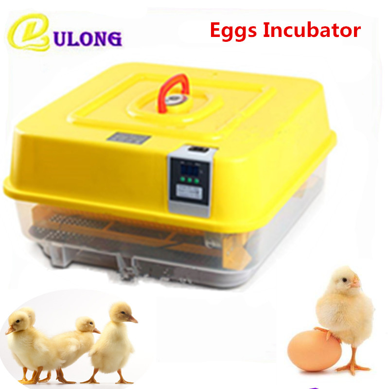 Automatic digital temperature control incubator for chicken quail goose ducks brooder machine small hatcher equipment automatic digital egg incubator mini multifunctional hatcher electric hatching machine chicken brooder