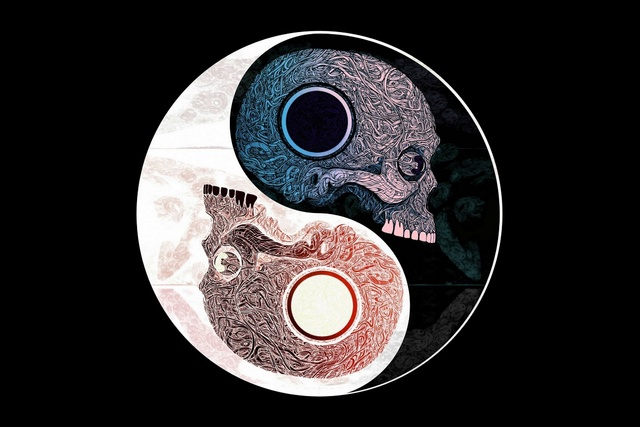 Yin Yang Symbol Skull Pattern Abstract Chinese Philosophy Ys78 Room