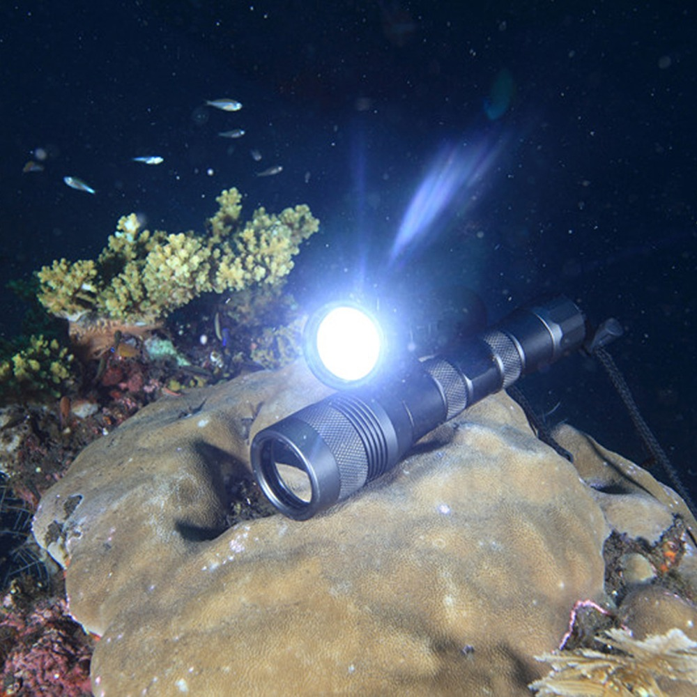 Купить с кэшбэком DIV01 Cree L2 Scuba LED Diving Flashlight 2*26650 Torch Underwater 150M XM-L2 led diving tacitca Lantern