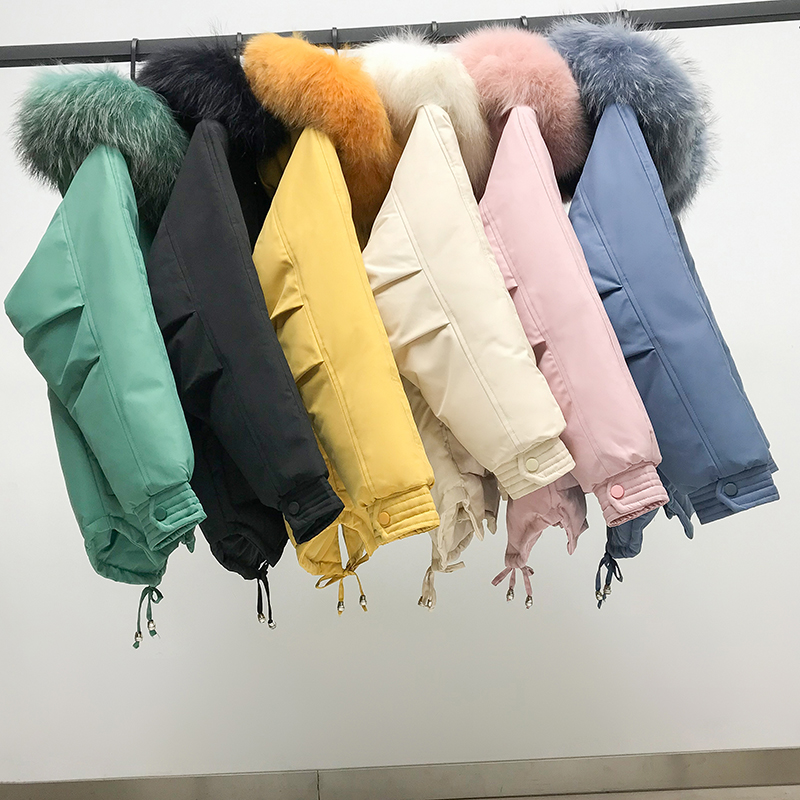 Orwindny Women 39 s Down Cotton Jacket 2019 New Loose Female Jacket Big Pockets Star Winter Coat Women Hooded Warm Regular Clothing in Parkas from Women 39 s Clothing