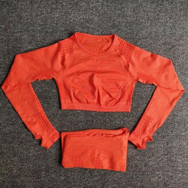 Women Seamless Yoga Sets High Waist Gym Mesh Leggings Shirts Suit Long Sleeve Fitness Workout Sports Running Thin Yoga Sets 5