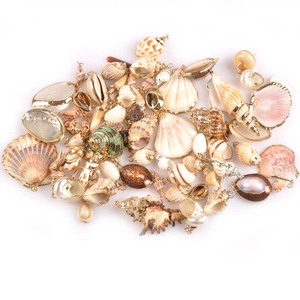 Mix Natural Seashell Gold Plated Crafts Handmade Ornaments For Pendant Shells DIY Jewelry Home Decoration 5pcs 20-40mm TR0251