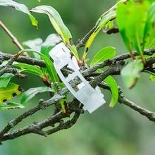 Типы растений Висячие пластиковые Прочные прозрачные опоры растений зажимы лоза садовые овощи 23 мм