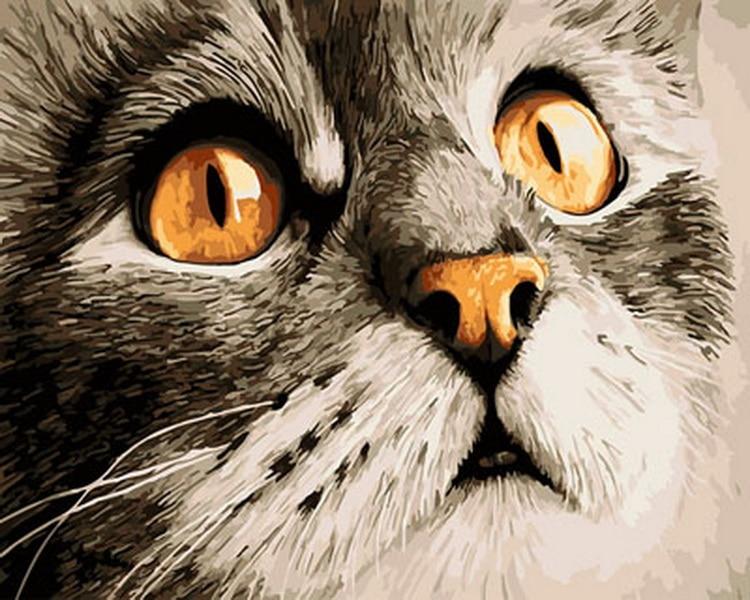 Выполненные картина маслом по номерам Настенный декор diy живопись на холсте для домашнего декора 4050 скучно kity