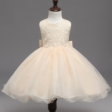 Toddler Girl Lace Embroidery Backless Tutu Dress
