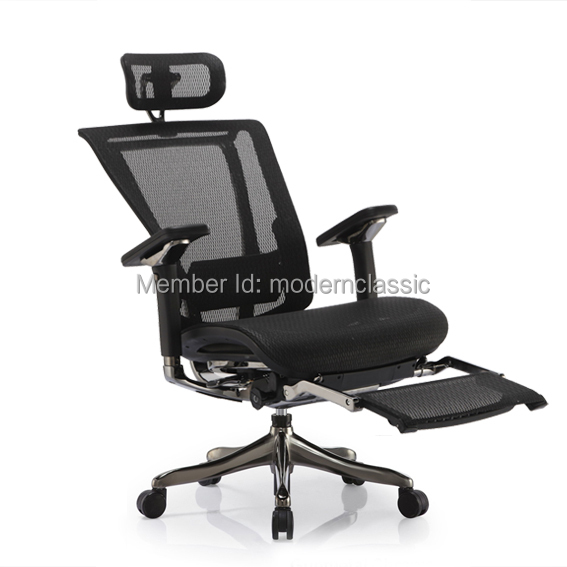 Ergohuman V2 Luxury High back office mesh chair ergonomic mesh ...