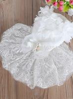 Factory Direct Wholesale Pet Supplies Pet Dog Wedding Dress Lace Wedding Dress Season