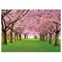Vinil Kiraz Çiçeği Sokak ve Otlar Arka Planında 2.1*1.5 M (7 * 5ft) Fotoğraf Arka Fotoğraf Sahne Stüdyo için veya Sahne