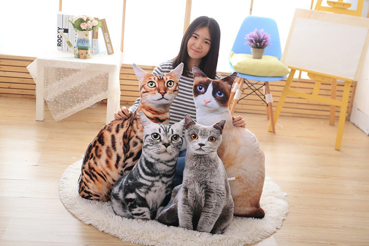 3D cartoon squatting cat back cushion sofa cushion plush throw pillow toy home decoration gift a1729