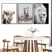 Черно белый животный плакат со львом холст живопись bison настенные