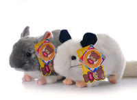 Kawaii Simulation Chinchillidae Plush Toys Mini Chinchillas Plush Dolls Simulation Mouse Stuffed Toys For Kids Free