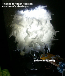 Image 2 - Bedside reading room foyer sitting room living heart shape white feather crystal table lamp light