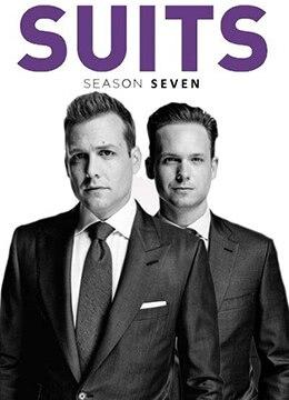 《金装律师 第七季》2017年美国剧情,喜剧电视剧在线观看