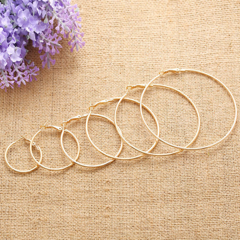 H:HYDE Gold Color Stainless Steel Big Hoop Earrings for Women Round Circle Earrings Brincos Jewelry Party Rock Gift Two colors ...