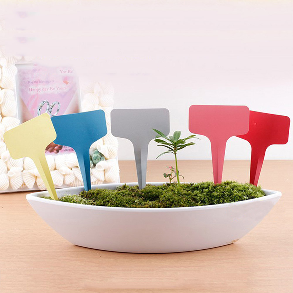 534f88e819d2 US $8.74 24% OFF|100Pcs Mini Plastic Plant Markers T Type Plant Tag  Gardening Label Garden Flower Pot Nursery Planters Thick Tag Label  Marker-in Plant ...