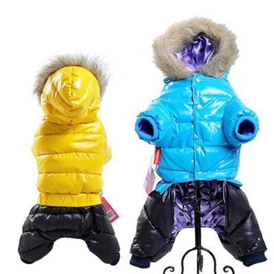 Chaqueta impermeable de invierno para perro 3
