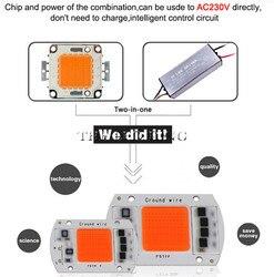 LED COB Chip Für Wachsen Licht Gesamte Spektrum Eingang 220 V AC 20 Watt 30 Watt 50 Watt 60 Watt 80 Watt 120 Watt Für Indoor-Anlage Sämling Wachsen und blume
