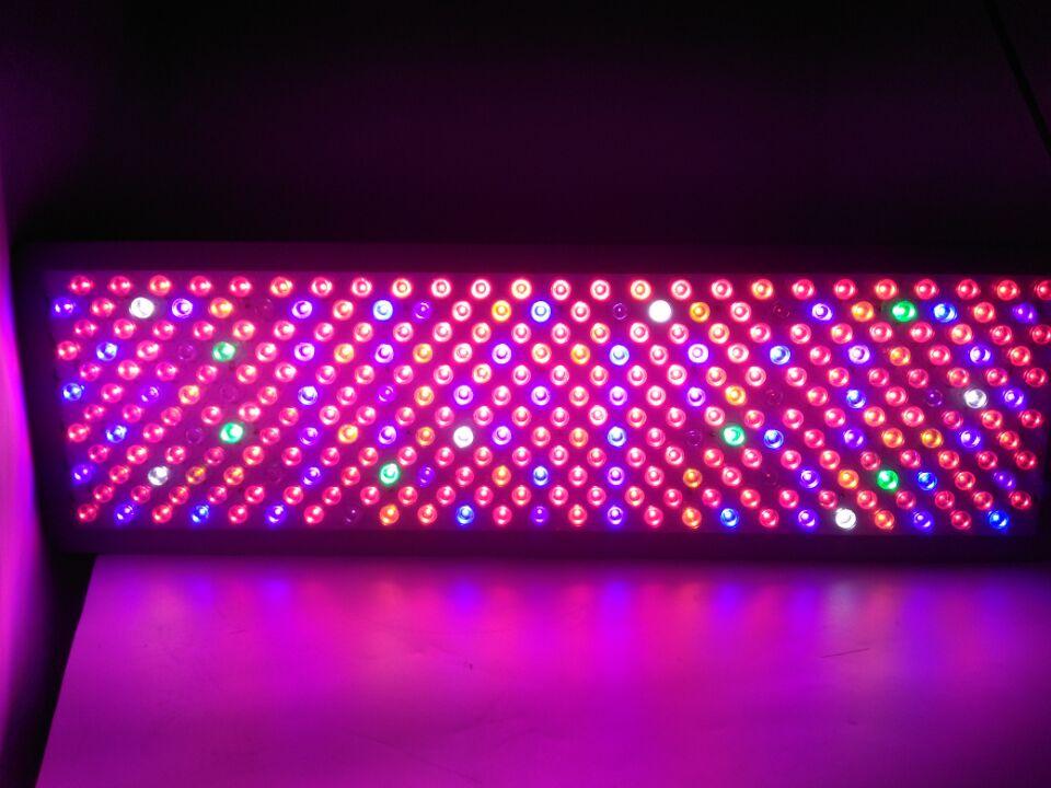 Купить с кэшбэком Nebular P900 LED grow light 900W 12-band high PAR DUAL VEG/FLOWER FULL SPECTRUM hydroponic greenhouse