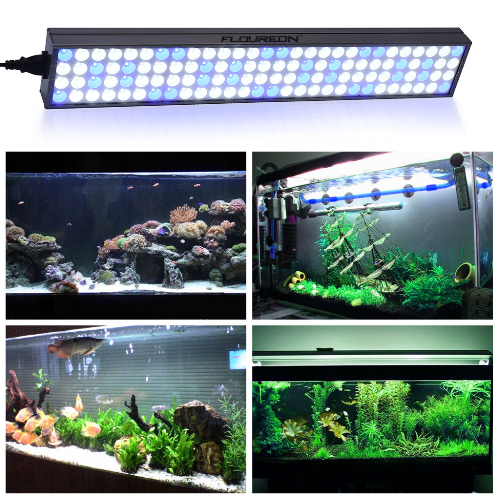 Floureon 60W 25inch LED Aquarium Lightu0026Fish Tank Light for Freshwater/Saltwater112pc LED Light for Coral Reef Growwith Bracket-in LED Grow Lights from ...  sc 1 st  AliExpress.com & Floureon 60W 25inch LED Aquarium Lightu0026Fish Tank Light for ... azcodes.com