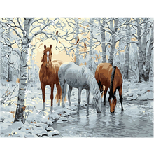 WEEN Animal DIY Framed Oil Painting By Numbers, Coloring By Numbers, Modern Wall Art Picture,Home Decoration 40x50cm-Snow hoses rihe exquisite rose flowers framed oil painting by numbers coloring by numbers modern wall art picture home decoration 40x50cm