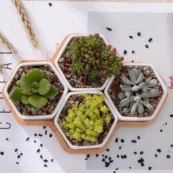 Conjunto de 4 hexágono macetas de cerámica blanca planta suculenta con soporte de bambú decoración del hogar Bonsai plantadores
