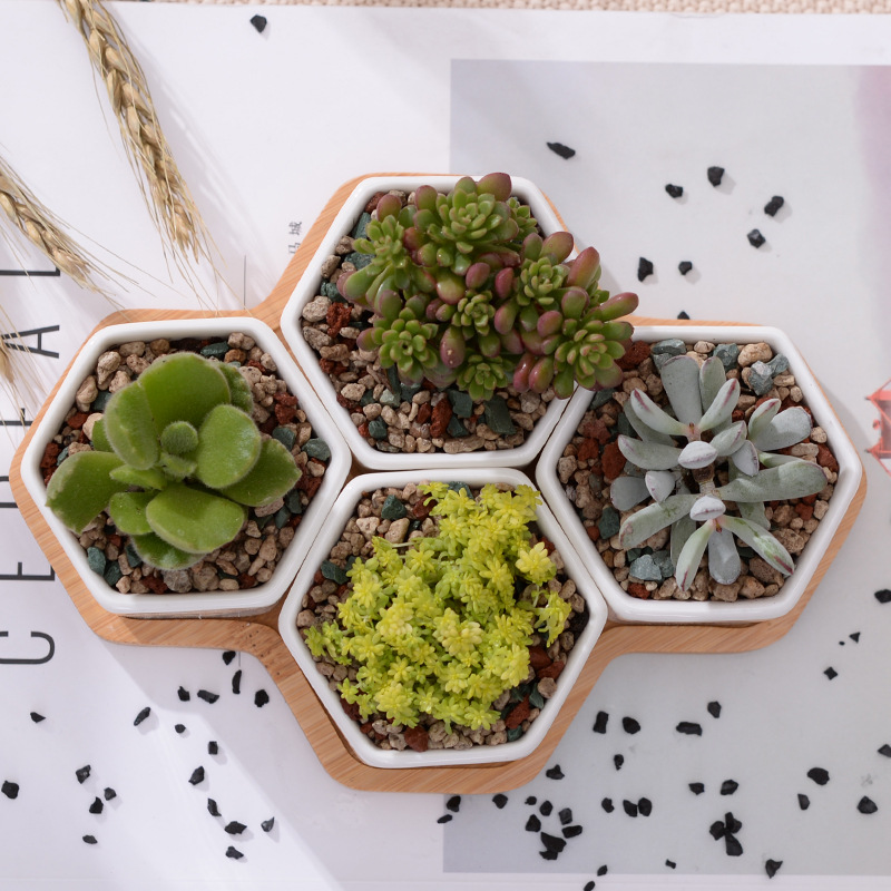 Set of 4 Hexagon Flowerpots White Ceramic Succulent Plant Pot with Bamboo Stand Home Decor Bonsai Planters