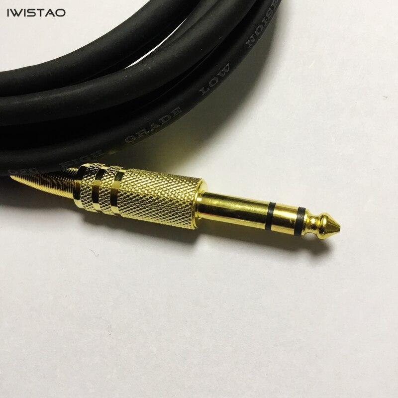 Rallonge 30 cm Câble Y 24-carats laboratoire fiches bananes 4 mm Câble d/'essai