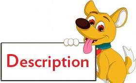 Dog clothes Description