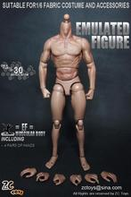 """ZC TOYS New Style 1/6 Scale Military Male Soldier Model Nude Muscular Body Similar to TTM19 Wolverine 12"""" Action Figure Toys"""