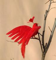 Simulation Phoenix Bird About 20x28cm Red Feathers Spreading Wings Bird Model Handicraft Prop Home Garden Decoration