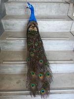 Пены и перья vivid красивая птица перья павлина большой 120 см пастырской ремесло, сад, вечерние украшения подарок b1558