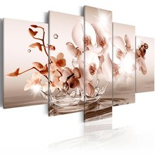 5 Panel Wall Pictures for Living Room Picture Print Painting On Canvas Wall Art Home Decor Living Room Canvas Print/PJMT-B (465)(China)
