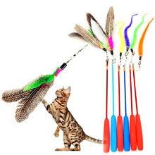 Bâton extensible en plastique pour chat, jouet pour animal de compagnie, plume d'oiseau, pour l'entraînement au vol