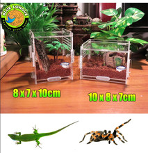 Crystal Acrylic Herp Pet Cage, Small box mosquera acrylic pet feeding scorpion scollops 7 x 8 10 cm