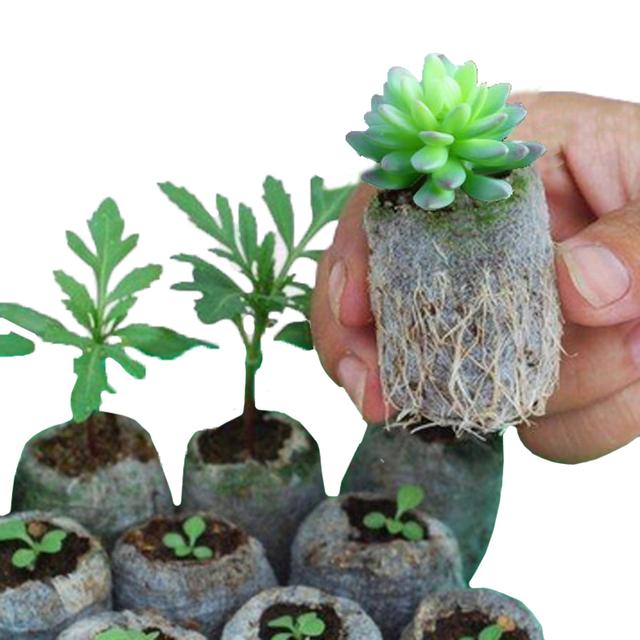 50pcs Environmental Degradation Portable Cellular Alternative Non-woven Bags Nursery Seedling Nursery Bags Container Bags