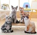 Creative Simulation Cat Plush Toys 3D Pillow Soft Plush Toy Comfort Cat Doll Washable Star Funny 3D Cushion Dolls